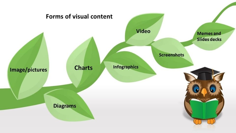 Forms of visual content